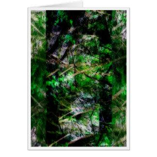 secrets of nature II Card