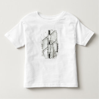 Section of the wall and arch tee shirt
