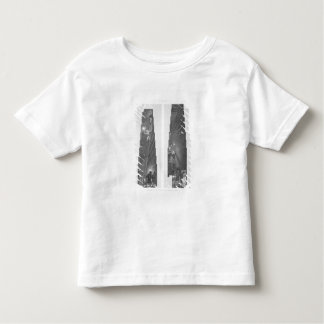Sections of the Gallery in the Great Pyramid, Gize T Shirt
