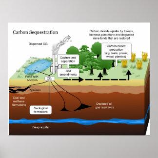 Secuestro del dióxido de carbono de la central elé póster