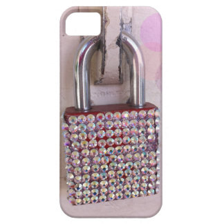 Secure the Jewels iphone5 case