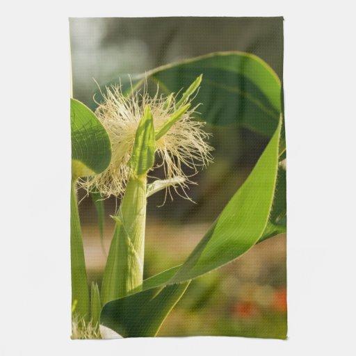 Seda del maíz en el tallo toallas de mano