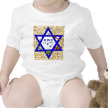 Seder Plate T-shirts