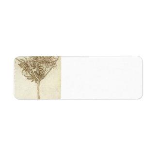 Sedge.jpg de Leonardo da Vinci Etiqueta De Remite