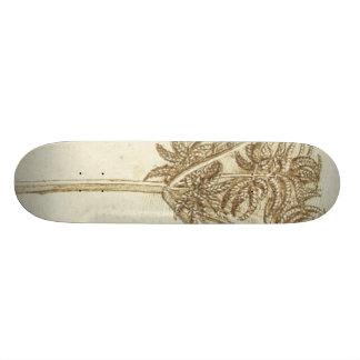 Sedge Skateboard Deck
