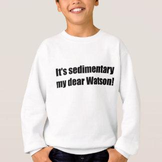sedimentaryblack sweatshirt