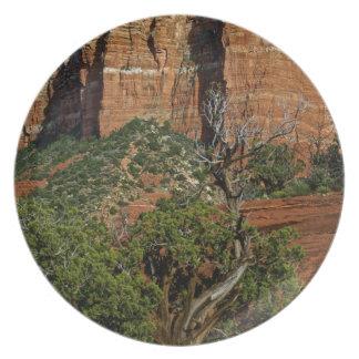 Sedona Mountain trails Dinner Plate