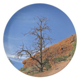 Sedona Mountain trails Plate