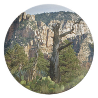 Sedona Mountains trails Party Plate