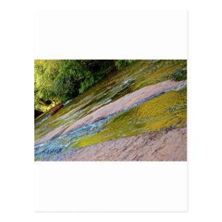 Sedona Oak Creak Postcard