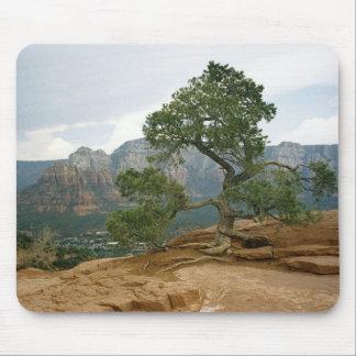 Sedona tree mouse pad