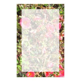 Sedum Flower Stationery