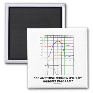 See Anything Wrong With My Wiggers Diagram? 2 Inch Square Magnet