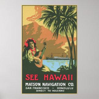 See Hawaii Poster