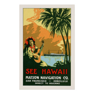 See Hawaii Travel Poster