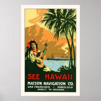 See Hawaii Travel Poster