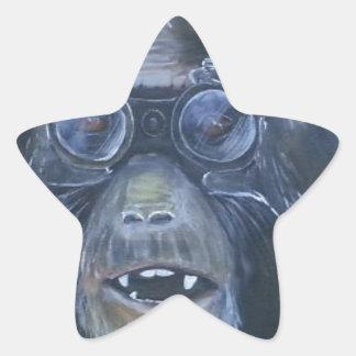 See it, Hear it and speak it Star Sticker