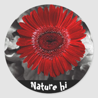 see red classic round sticker