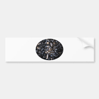 See The Dog in Space Bumper Sticker