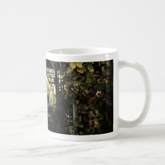 See Through Coffee Mug