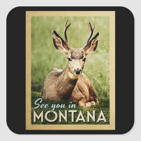 See You In Montana - Stag Deer Wildlife Square Sticker