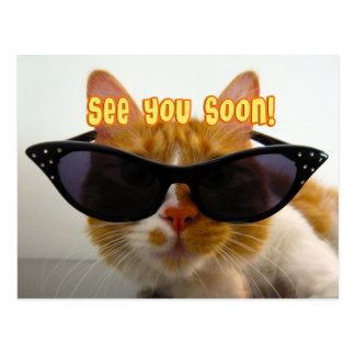 See You Soon - Cool Cat Postcard
