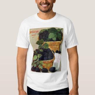 Seed catalog Basic T-Shirt
