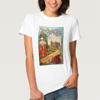 Seed catalog Ladies Baby Doll (Fitted) T-shirt