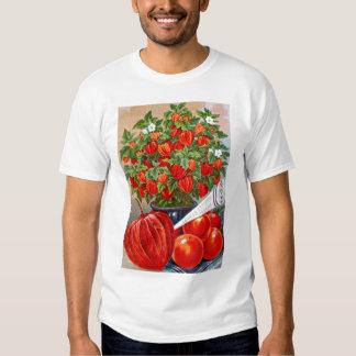 Seed catalog page #27 Basic T-Shirt