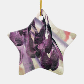 Seed Clusters Double-Sided Star Ceramic Christmas Ornament