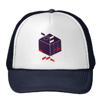 Seed-Cubic graphic hat