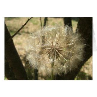 Seed Globe Tree Card