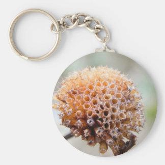 Seed Head - Bee Balm Keychain