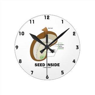 Seed Inside (Dicotyledon Bean Seed Anatomy) Clocks