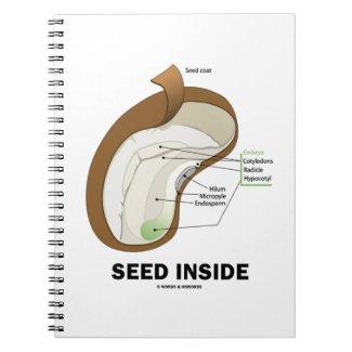 Seed Inside (Dicotyledon Bean Seed Anatomy) Notebook