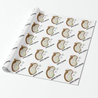 Seed Inside (Dicotyledon Bean Seed Anatomy) Gift Wrap