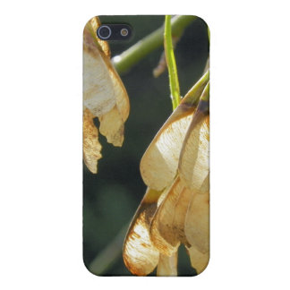 Seed iPhone 5 Cases