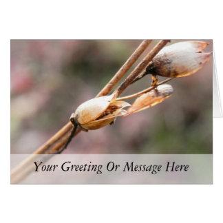 Seed Pod - Nicotiana Card