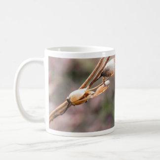 Seed Pod - Nicotiana Coffee Mug