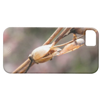 Seed Pod - Nicotiana iPhone SE/5/5s Case