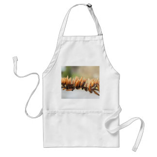 Seed Pods - Butterfly Bush Apron