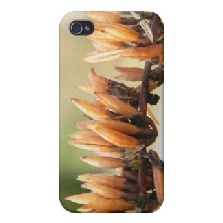 Seed Pods - Butterfly Bush Covers For iPhone 4