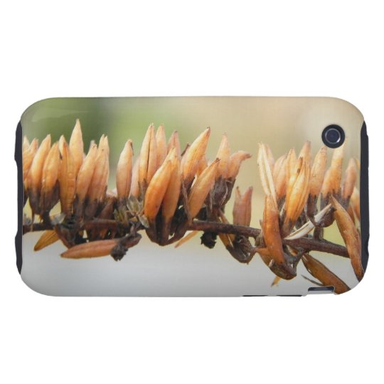 Seed Pods - Butterfly Bush iPhone 3 Tough Cover