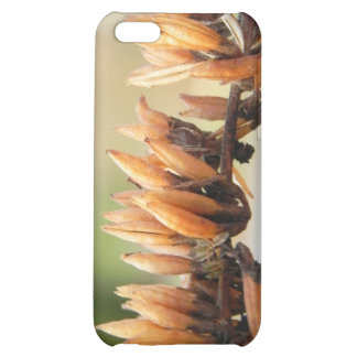 Seed Pods - Butterfly Bush iPhone 5C Case