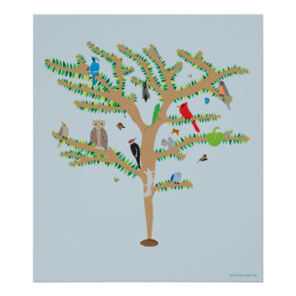 Seed to Tree poster
