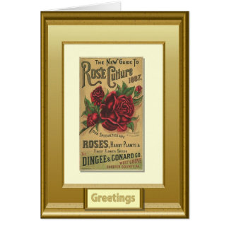 Seeds of the past, Greetings, Rose Cards