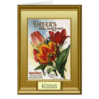 Seeds of the past, I love tulips Card