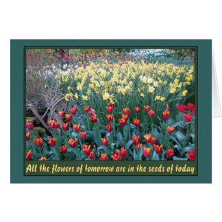 Seeds of Tomorrow Card