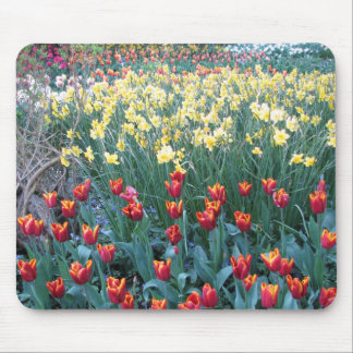 Seeds of Tomorrow Mouse Pad