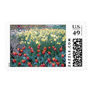 Seeds of Tomorrow Postage Stamp